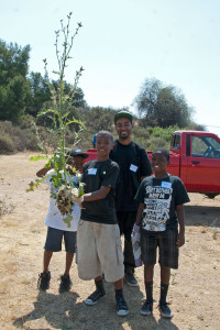 Now, that's a thistle!  TJ shows off a large Italian Thistle with Gabe, Jaylen, and G. Kyette Bryant (Mt. SAC). Nancy Hamlett.