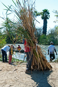 Those are some cattails!  Prof. David Harris (HMC) can barely be seen behind the cattails he's hauling out, as other volunteers head out to the lake to get more. Nancy Hamlett.