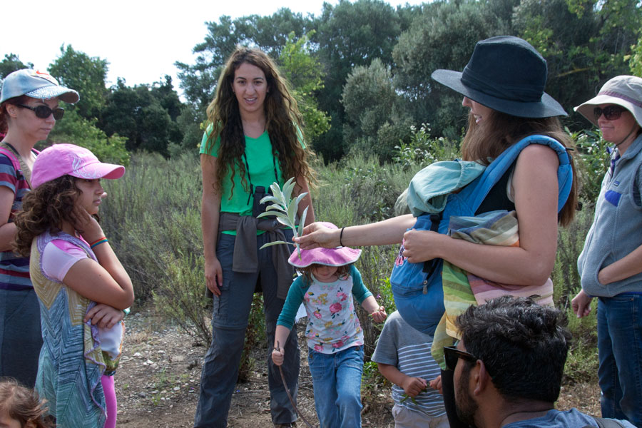 Families learn about White Sage at the Plant Ecology station on the Family Science Tour.