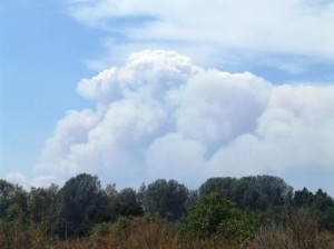 Day 5, August 30 - Pyrocumulus cloud from the Station Fire seen from the BFS