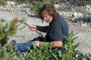 Kerry Knudsen collecting a voucher specimen of L. munzii.