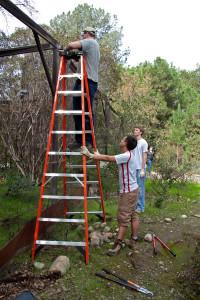 Peter Pellitier (Pomona '14), Michael Lertvilai (HMC '15) , and Bryan Visser (HMC '13) cut and remove chicken wire. Nancy Hamlett.