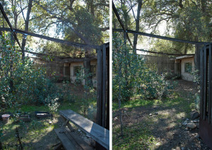 Debris and remnants of old experiments were removed. Left: before. Right: after. Nancy Hamlett.