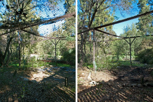 The electric fence and disintegrated liner were removed from the old turtle pond. Nancy Hamlett.