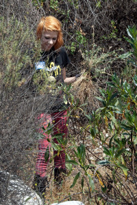 Alicia Jackson (Citrus) brings down a handful of thistles from the lake berm.