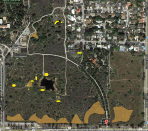 Areas from which C. melitensis was removed. Yellow = isolated patches removed by volunteers. Orange shading = areas weed-whacked by Johnny's Tree Service. Nancy Hamlett.