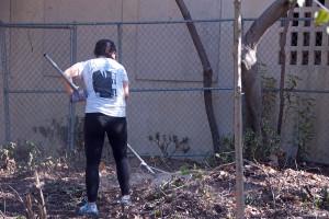 Lin Yang (HMC '16) rakes up leaves. Nancy Hamlett.