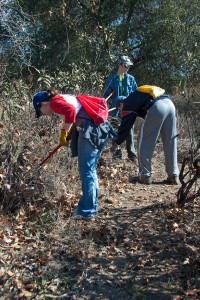 Sarah Stevens (HMC '15), Max Byers (HMC '17), and Kyle Jensen (Pomona) trim back shrubs along the trail.