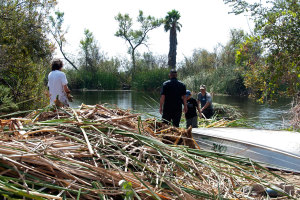 Anthony Bonno (Citrus) and Tim Cox get ready to add cattails from the boats to the growing pile. Nancy Hamlett.
