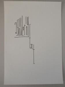 DM 41